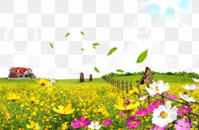 Flowers - Flower Poster PNG
