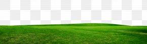 Grass - Artificial Turf Grassland Land Lot Energy Wallpaper PNG