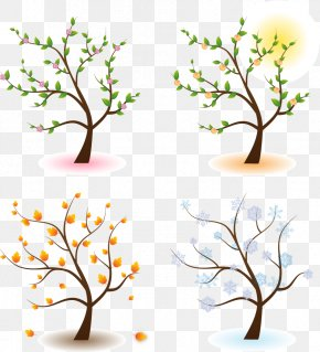 Vector Four Seasons Blooms - Season Tree Clip Art PNG