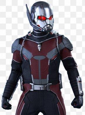 Ant-Man Free Download - Wasp Hank Pym Ant-Man Iron Man PNG