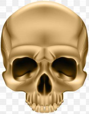 Golden Skull Clip Art Image - Skull And Crossbones Sticker Illustration PNG
