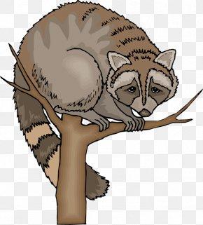 Raccoon Cliparts - Raccoon Blog Clip Art PNG