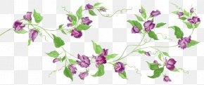 Flower - Floral Design Flower Desktop Wallpaper Clip Art PNG