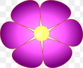 Violet Photo - Violet Viola Sororia Purple Clip Art PNG