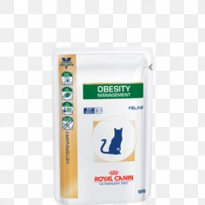 Cat - Cat Food Dog Veterinarian Pet PNG