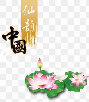 Font Lotus Poster Vector - Euclidean Vector Font PNG