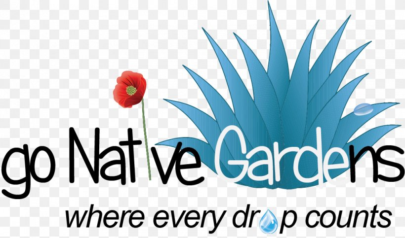 Logo Font Brand Product Flower, PNG, 1028x606px, Logo, Brand, Flower, Microsoft Azure, Text Download Free