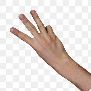 3 Fingers - Nail Thumb Digit Finger PNG