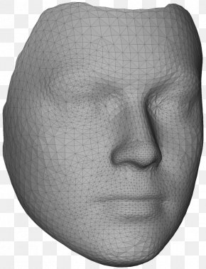 Nose - Nose Face Polygon Mesh 3D Modeling Three-dimensional Space PNG