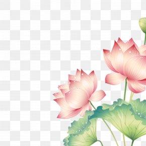 Cartoon Lotus - China Disease Rheumatoid Arthritis Therapy PNG