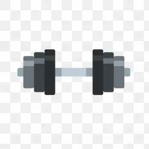 Gray Dumbbell - Dumbbell Euclidean Vector Bodybuilding Physical Exercise Illustration PNG