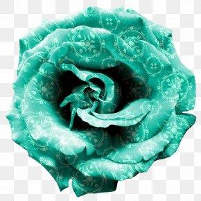 Teal Frame - Desktop Wallpaper Rose Turquoise PNG