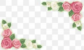 Rose Corner Flower Material - Adobe Illustrator Garden Roses PNG