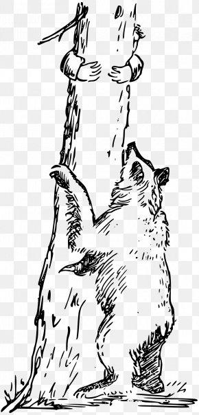 Bear - Bear Line Art Clip Art PNG