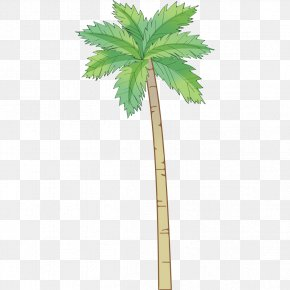 Hand-painted Coconut Tree Pattern - Arecaceae Coconut Tree PNG