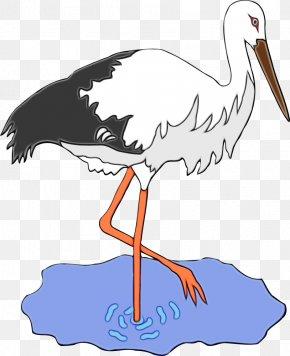 Little Blue Heron Wildlife - Bird Stork Beak White Stork Crane-like Bird PNG
