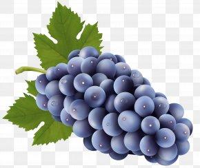 Grapes Free Clip Art Image - Sultana Grape Clip Art PNG