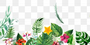 Free Hand-painted Plant Decoration Patterns - Plant Ink Flower PNG