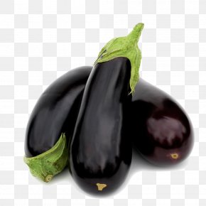 Eggplant - Eggplant Lasagne Italian Cuisine Nutrition Food PNG