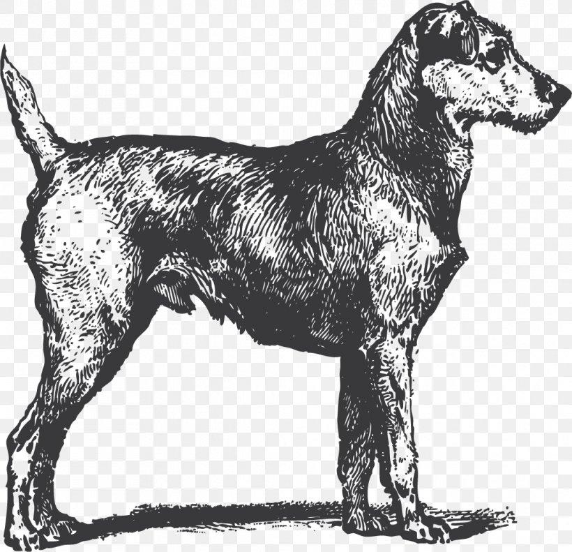 Bull Terrier Irish Terrier Irish Wolfhound Puppy, PNG, 1037x1001px, Bull Terrier, Black And White, Carnivoran, Dog, Dog Breed Download Free