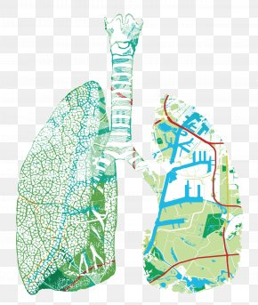 Lungs - Westpoort Industry European Union Particulates Location PNG