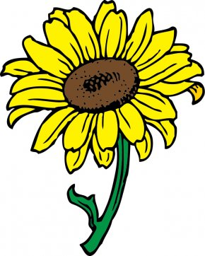 Ham Radio Clipart - Common Sunflower Free Content Clip Art PNG