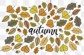 Cartoon Leaves Autumn Poster - Autumn Leaf Poster PNG