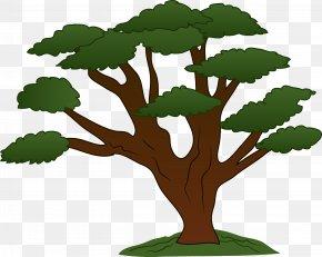 Tree Clip Art - Tree Oak Clip Art PNG