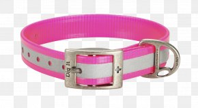 Dog Claw Free Buckle Chart - Dog Collar Dog Collar Pet First Aid & Emergency Kits PNG