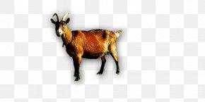 Goat Horns - Goat Sheep Cattle Horn PNG