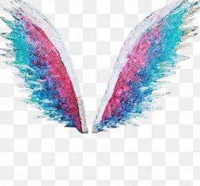 Wings - Photography Desktop Wallpaper Light PNG