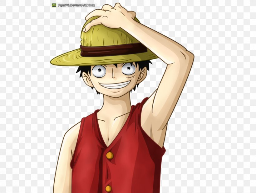 Monkey D Luffy Roronoa Zoro Vinsmoke Sanji One Piece