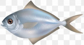 Fish - Fish As Food Fishing Clip Art PNG