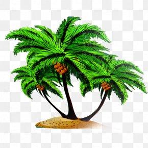 Coconut Tree - Arecaceae Coconut Tree Euclidean Vector PNG