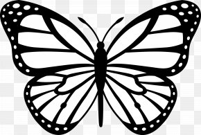 Black And White Drawings Of Animals - Monarch Butterfly Insect Outline Clip Art PNG