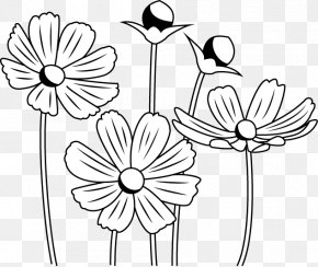 Flower - Floral Design Black And White Monochrome Painting Drawing PNG
