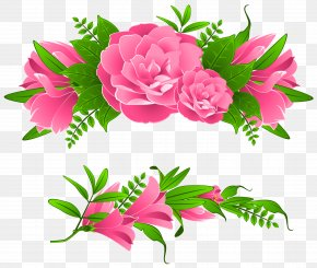 Flowers Borders Free Image - Garden Roses Centifolia Roses Pink Flowers PNG