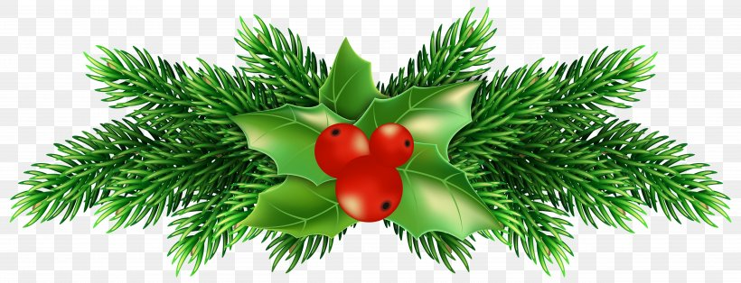 Holly Clip Art, PNG, 5000x1917px, Common Holly, A Christmas Carol, Blog, Boxing Day, Christmas Download Free