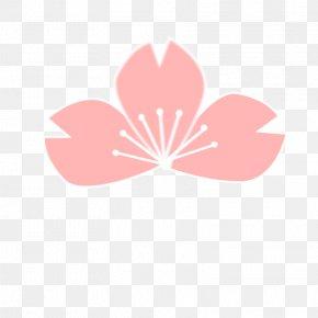 Pink Cherry - Sakura Samurai: Art Of The Sword Cherry Blossom Download Clip Art PNG