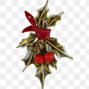 HOLLY - Holly Christmas Decoration Aquifoliales Christmas Ornament PNG
