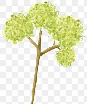 Spring Planting Tree - Plant Stem Plants PNG