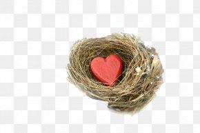 Love Heart - Heart Vecteur Gratis PNG
