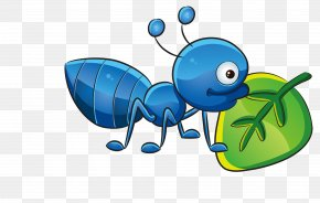 Cartoon Insect Vector Material - Mumbai T-shirt Childrens Clothing Boy PNG