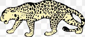 Leopard File - Amur Leopard Felidae Cheetah Snow Leopard Clip Art PNG