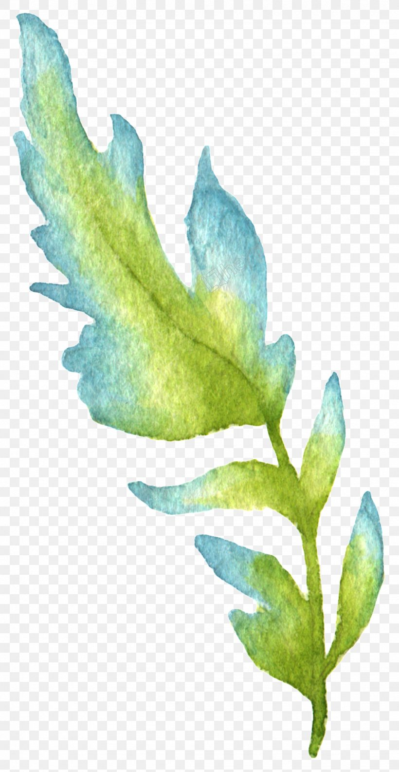 Leaf Watercolor Painting Green Image, PNG, 1024x1980px, Leaf, Aqua, Blue, Bluegreen, Botany Download Free