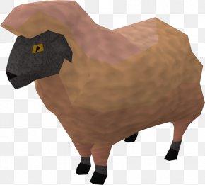 Sheep - Cattle Goat California Red Sheep RuneScape Livestock PNG