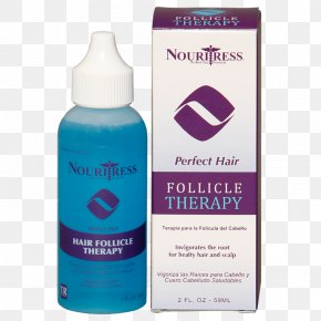 Hair - Hair Follicle Hair Care Management Of Hair Loss PNG
