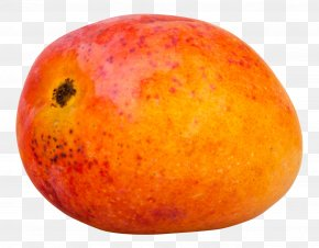 Mango - Mango Gonorrhea Fruit PNG