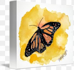 Watercolor Butterfly - Monarch Butterfly Watercolor Painting Drawing PNG
