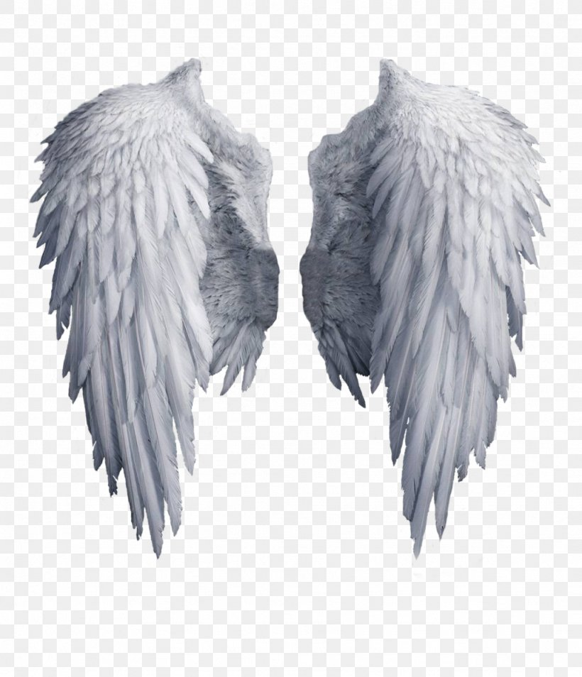 Angel Wing Clip Art, PNG, 1024x1192px, Deviantart, Black And White, Feather, Fur, Sticker Download Free